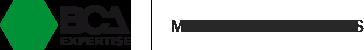 Carizy logo bca